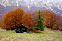horizontal de montagne en automne photos libres de droits