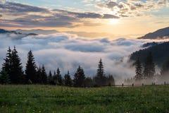 Horizontal de montagne Lever de soleil dans les nuages Brouillard dense avec la lumière molle gentille Sur la pelouse l'herbe et  Photos libres de droits