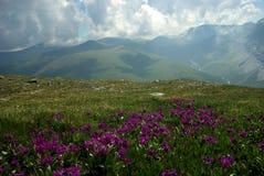 Horizontal de montagne Montagnes, les crêtes de montagne, gorges et vallées Les pierres sur les pentes Images stock
