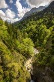 Horizontal de nature Photographie stock libre de droits