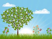 Horizontal de nature avec un arbre Image libre de droits