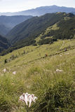Horizontal de nature dans Taiwan, Asie Photographie stock libre de droits