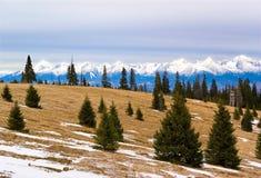 Horizontal de nature de montagnes de Tatras, Slovaquie images libres de droits