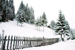 Horizontal de neige Image libre de droits