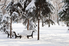 Horizontal de neige de l'hiver Images libres de droits