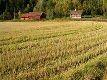 Horizontal de Norvège.   Images libres de droits