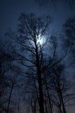 Horizontal de nuit Photo stock