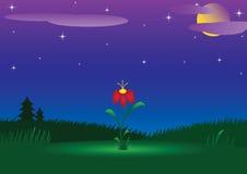 Horizontal de nuit avec une fleur radiante illustration libre de droits