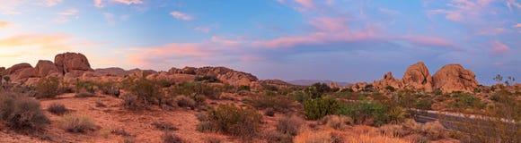 Horizontal de panorama de stationnement national d'arbre de Joshua. Image stock