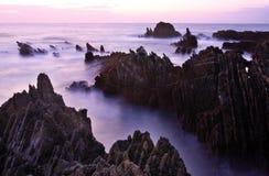 Horizontal de plage d'amoreira, Portugal Images libres de droits