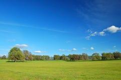Horizontal de printemps photo libre de droits