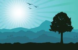 Horizontal de sarcelle d'hiver illustration stock