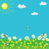 Horizontal de source avec le soleil, l'herbe, les fleurs et les abeilles Photographie stock libre de droits