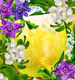 Horizontal de source Poire fleurissante Photographie stock