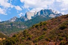 Horizontal de stationnement national de séquoia Images libres de droits