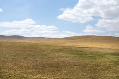 Horizontal de steppe Images stock