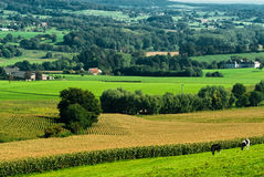 Horizontal de terres cultivables photos libres de droits