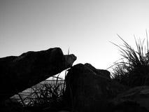 Horizontal de Wiffenspit Images libres de droits