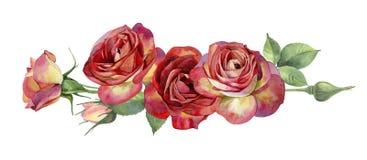 Horizontal des roses rouges d'aquarelle illustration libre de droits