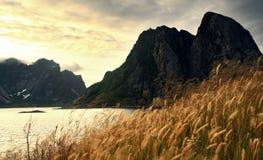 Horizontal du fjord Images libres de droits