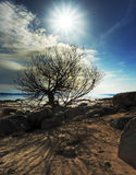 Horizontal du soleil de source Image libre de droits