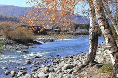 Horizontal en automne Image libre de droits