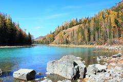 Horizontal en automne Photos libres de droits