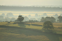 Horizontal en Bourgogne Image stock
