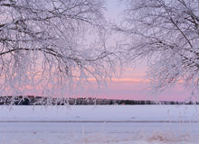 Horizontal en hiver photos libres de droits