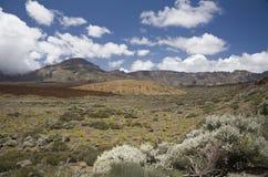 Horizontal en stationnement national Teide Photographie stock libre de droits