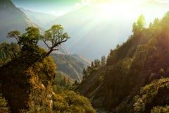 Horizontal enchanté de montagne Images libres de droits