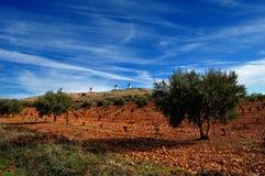 Horizontal espagnol avec des moulins à vent sur le fond Image stock