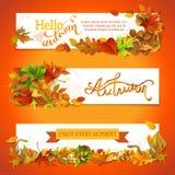 Horizontal fall banners set. Royalty Free Stock Photo
