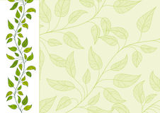 Horizontal floral background. Horizontal decorative  floral background Stock Image