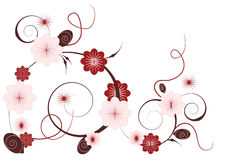 Horizontal floral vignette. Decorative floral pattern in pink and brown scheme Stock Image