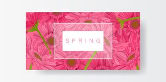 Horizontal frame banner with pink gerbera daisy flower. Horizontal pink banner full with pink gerbera daisy flower, paper on grey background. Vector illustration Stock Images