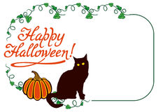 Horizontal frame with black cat and pumpkin. Stock Photography