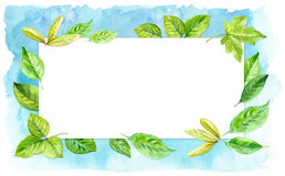 Horizontal frame made of various leaves in watercolor On a blue background. Hand-painted design elements. Stock Photos