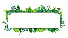 Free Horizontal Frame Of Tropical Leaves Around A White Empty Rectangle. Stock Photography - 185956472