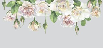 Horizontal frame of roses royalty free illustration