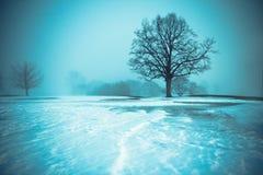 Horizontal froid Photos libres de droits