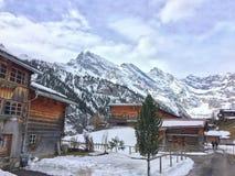 Horizontal froid de l'hiver Photographie stock libre de droits