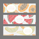 Horizontal Fruit Banner Set. Papaya, melon and watermelon. Harvest series. Stock Photography