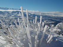 Horizontal gelé Photo libre de droits