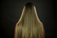 Horizontal gorgeous strait long brunette hair. Of a female model Stock Photography