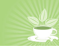 Horizontal Green tea backgroun. Tea cup with leaves on a green ray background Royalty Free Stock Image