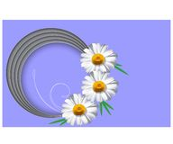 Horizontal greeting card template with daisy flower vector illustration stock illustration