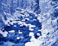 Horizontal hivernal de fleuve Images libres de droits