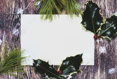 Christmas background notice with holly stock photos