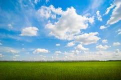 Horizontal idyllique images stock